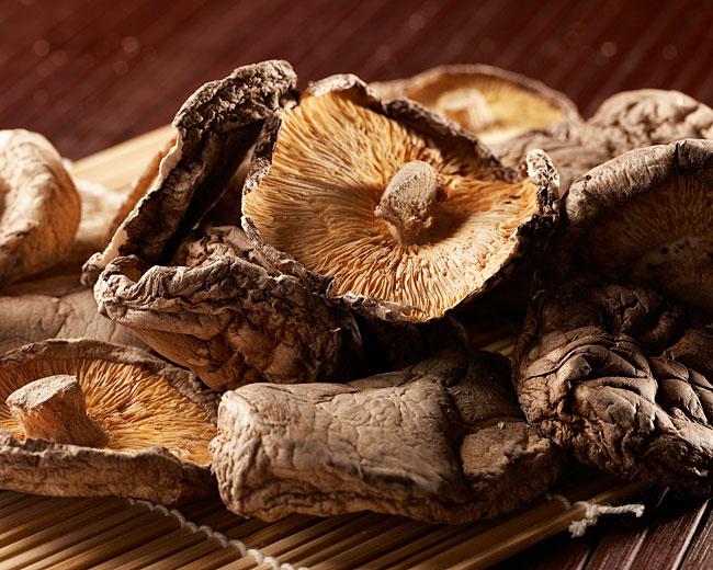 Shitaki Mushroom