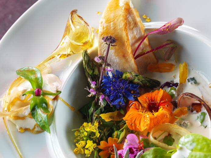 Food photography Montreal - Toronto