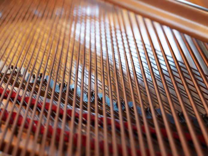 strings of grand piano. Product photography in Montreal area